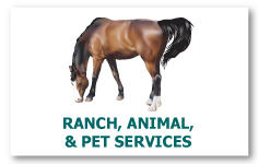 web_ranch